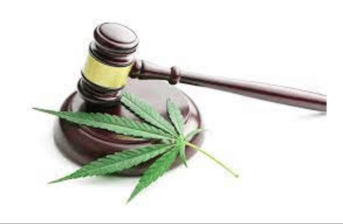 Bloomberg Article: Cannabis Practices Sprout as Big Law Firms Follow the Money